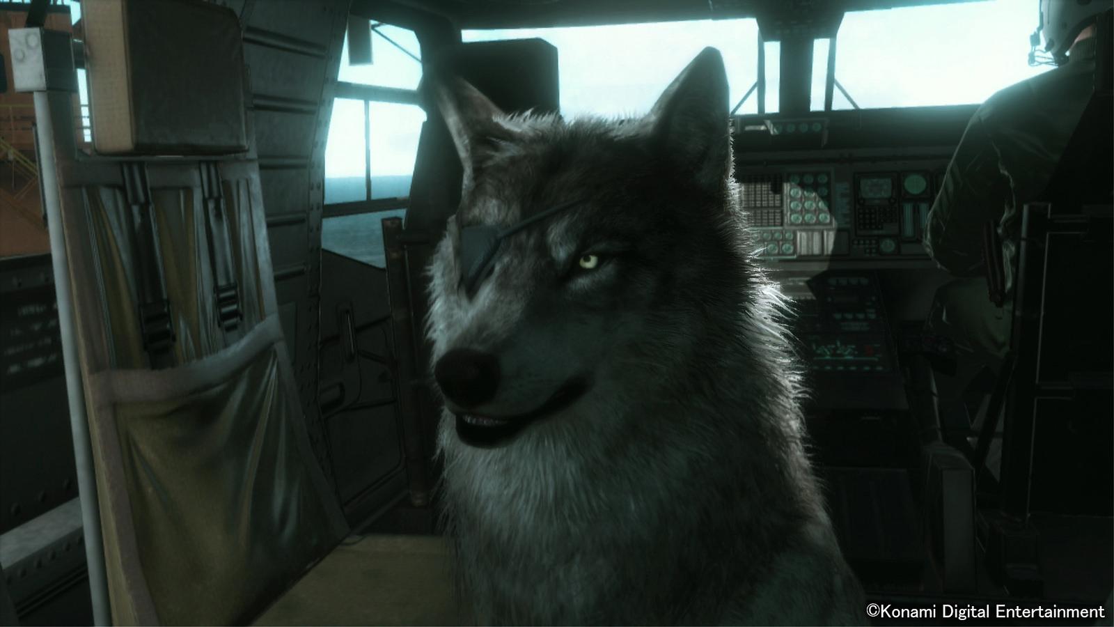 Diamond Dog nejlepší přítel Snakea v Metal Gear Solid V 100704