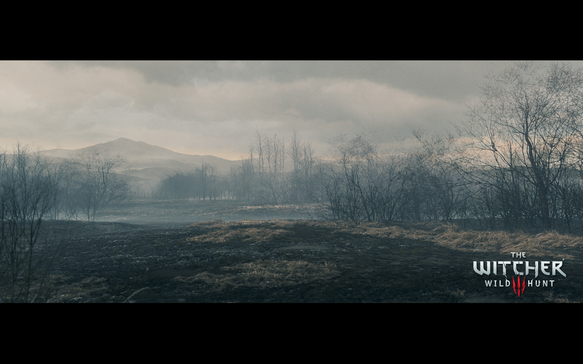 Za osm dní nový cinematic trailer ze Zaklínače 3 101413