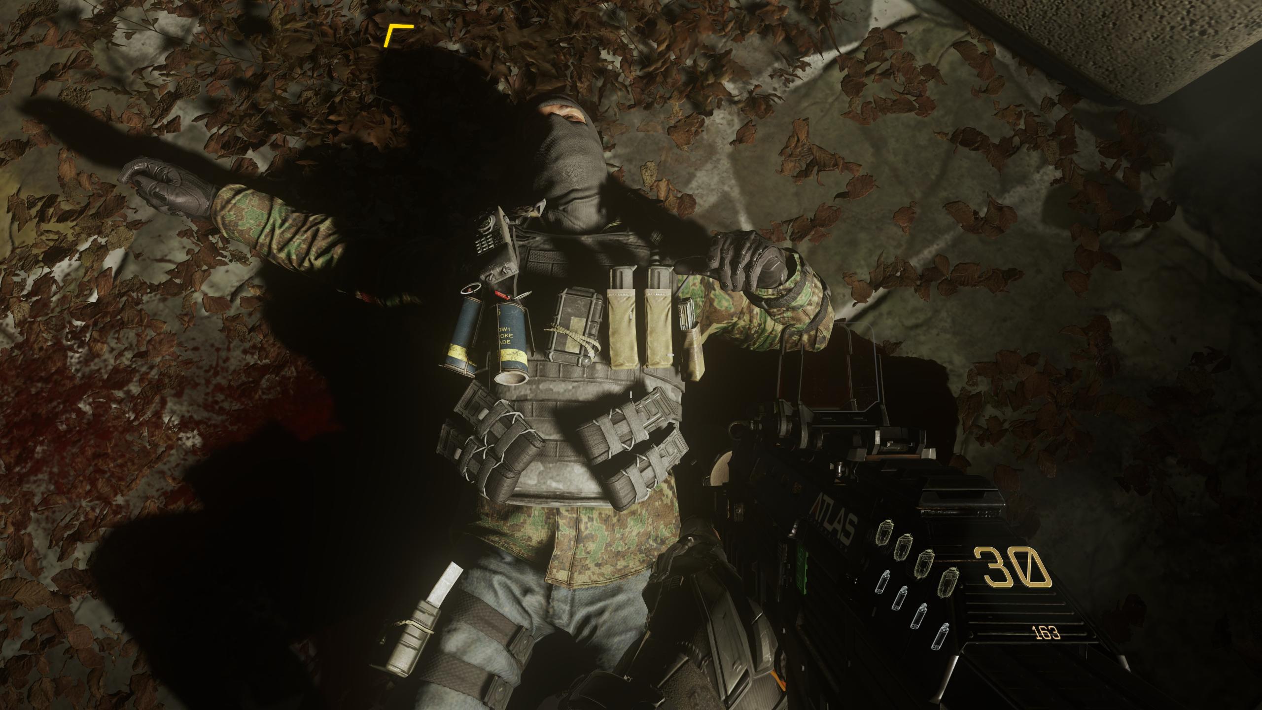 Nastavení grafiky, obrázky z PC verze a videa z nového Call of Duty 101895
