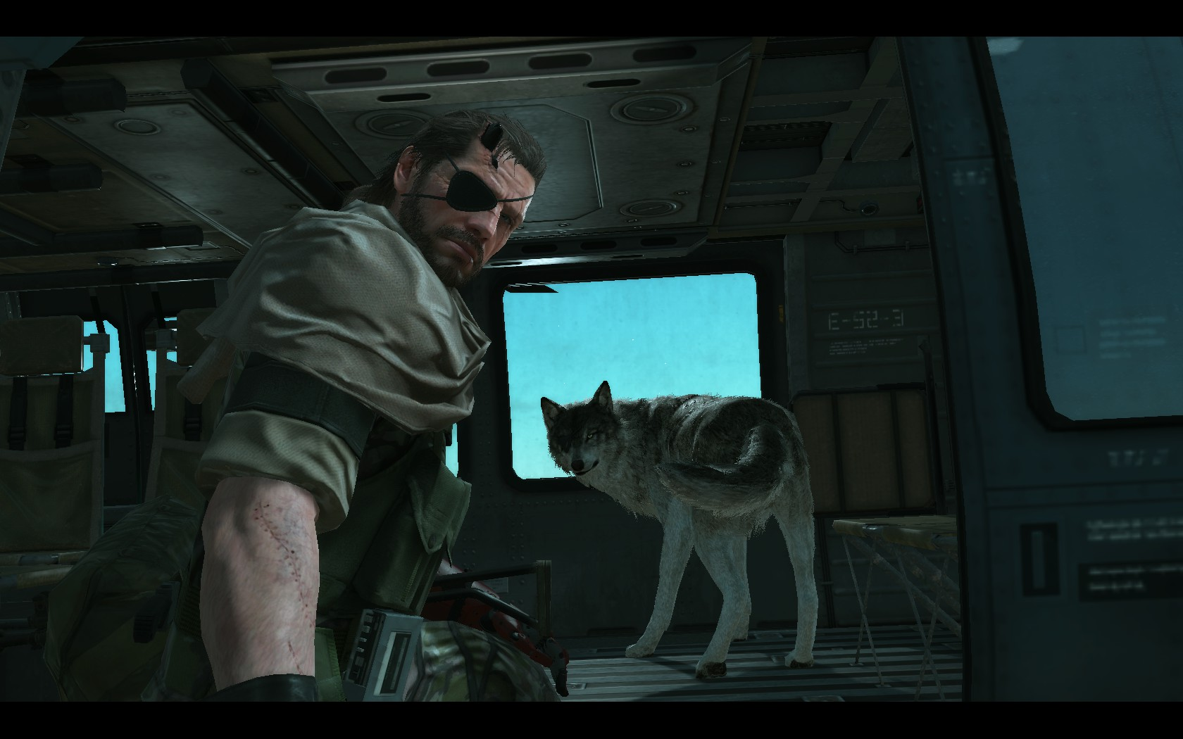 Metal Gear Solid V: The Phantom Pain 113740