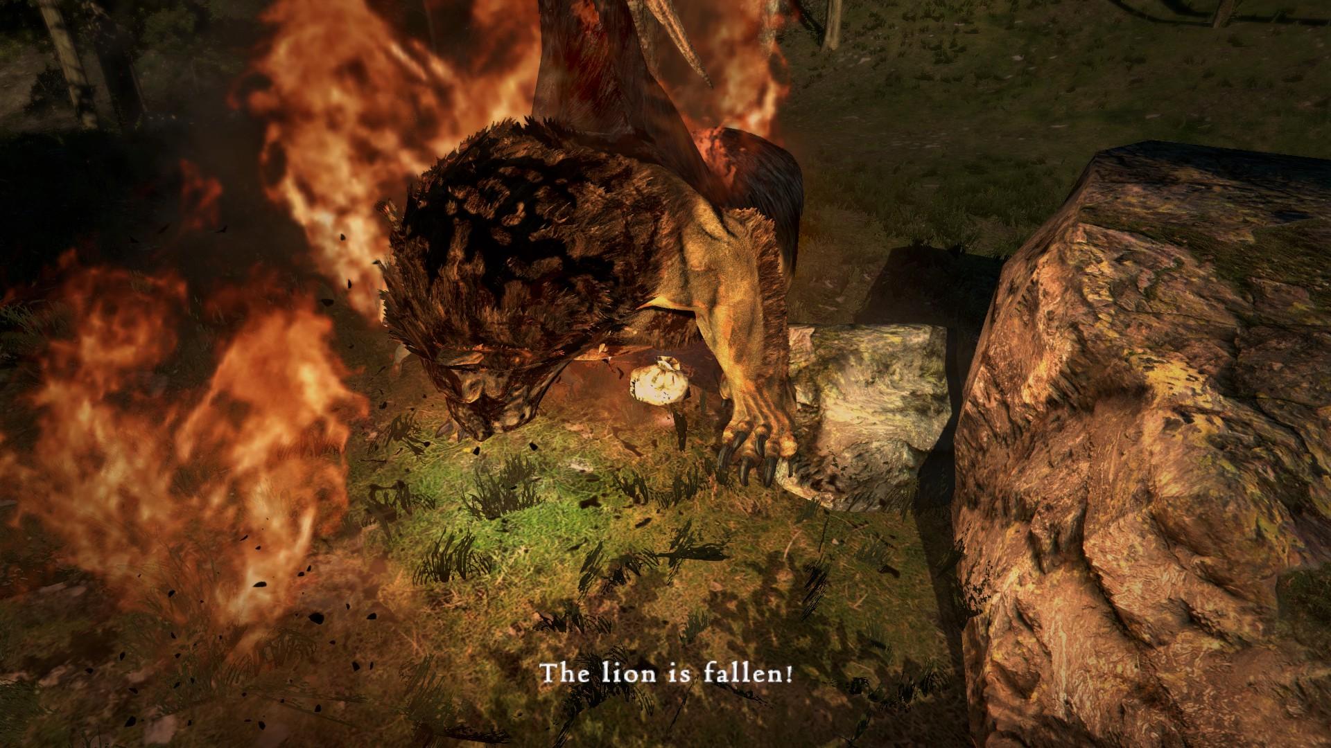 Dragon's Dogma: Dark Arisen 118008