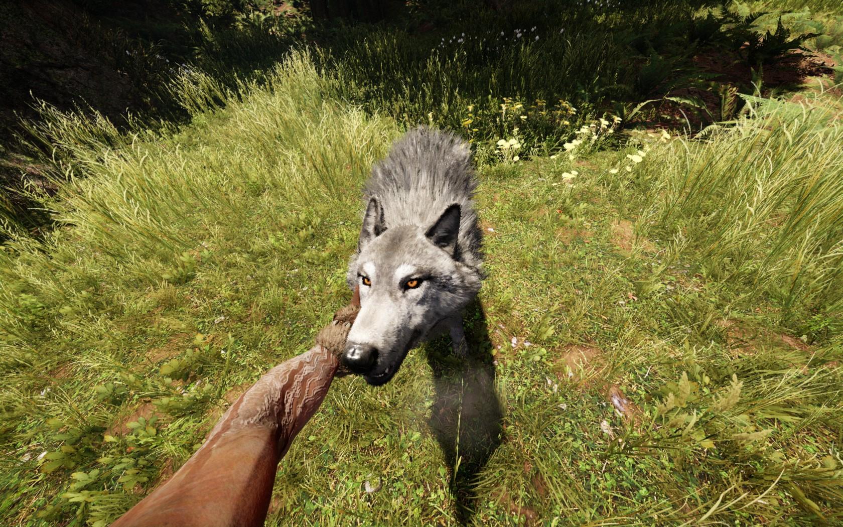Jak fungovat a vypadat PC verze Far Cry Primal? 120239