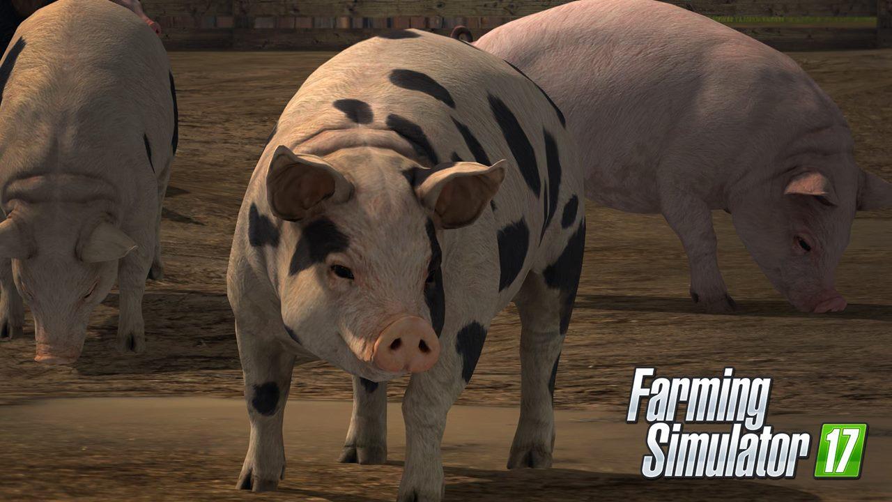 O nových plodinách a zvířatech ve Farming Simulatoru 17 129632