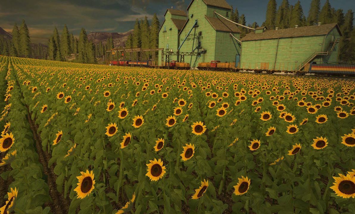 O nových plodinách a zvířatech ve Farming Simulatoru 17 129633