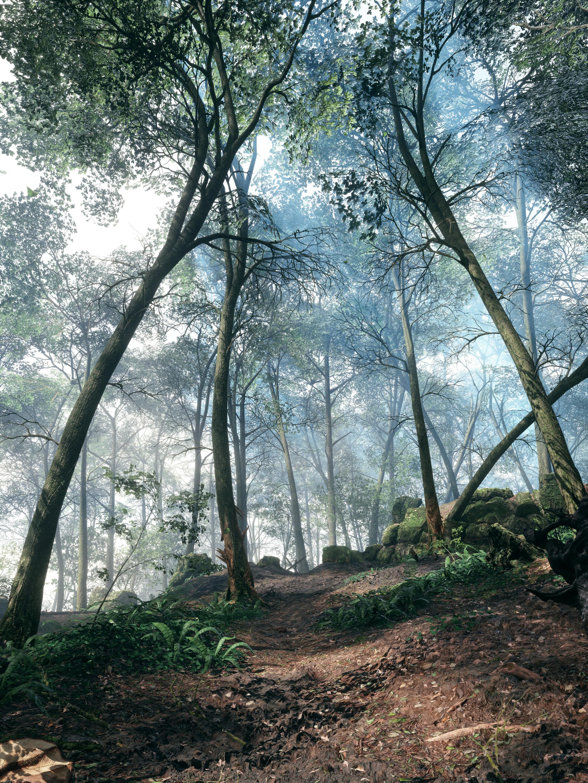 Krásné obrázky z Battlefieldu 1 132289