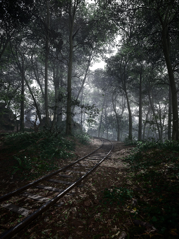 Krásné obrázky z Battlefieldu 1 132299