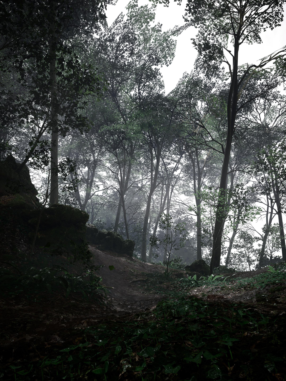 Krásné obrázky z Battlefieldu 1 132309