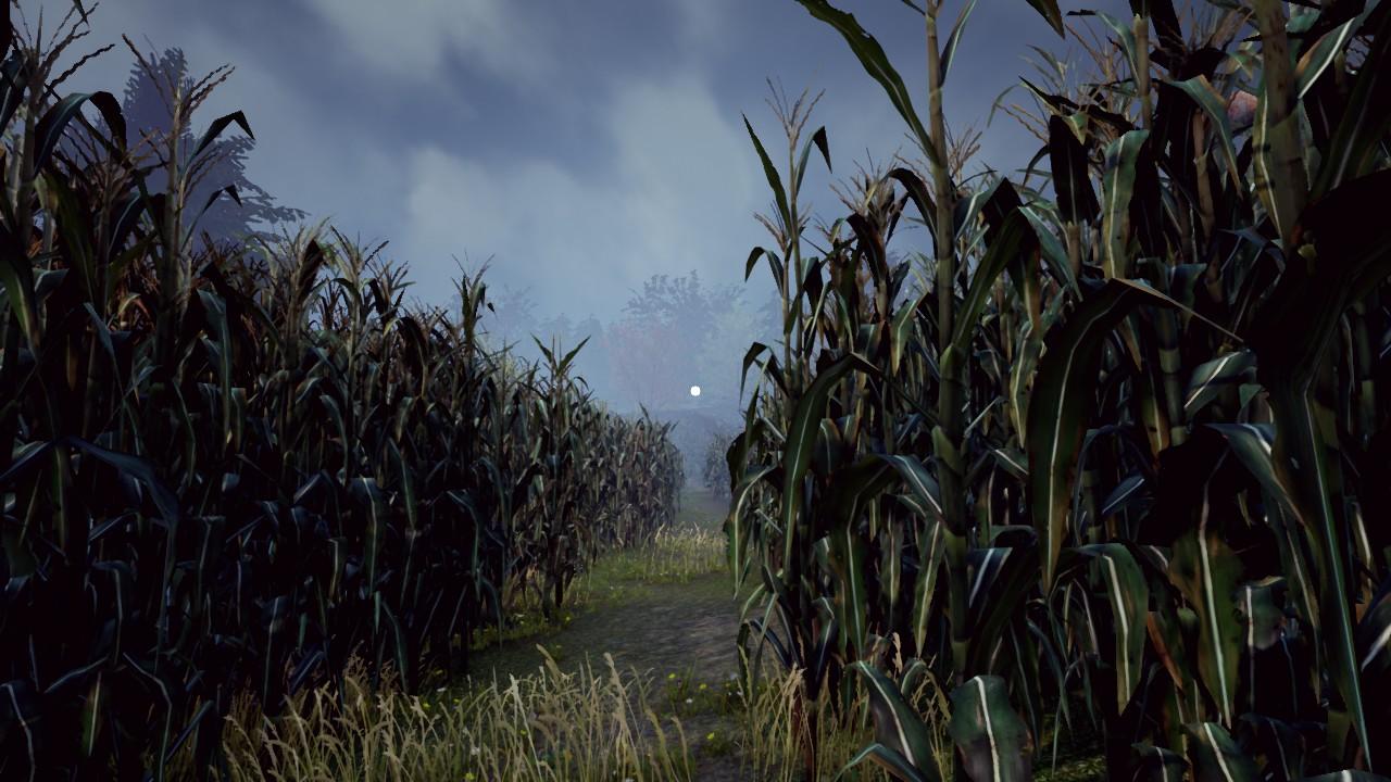 Maize – ztracen v kukuřičném poli 135965