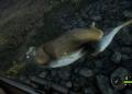 theHunter: Call of the Wild – simulátor lovu pro trpělivé 139597