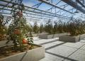 Pure Farming 2018 nabídne výzvy s extrémními situacemi nebo volnou hru 145548