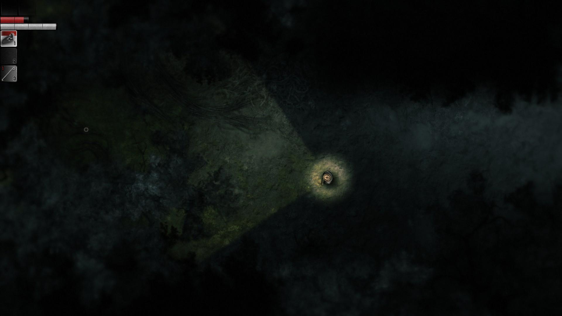 Darkwood – výlet do temného hvozdu 149180