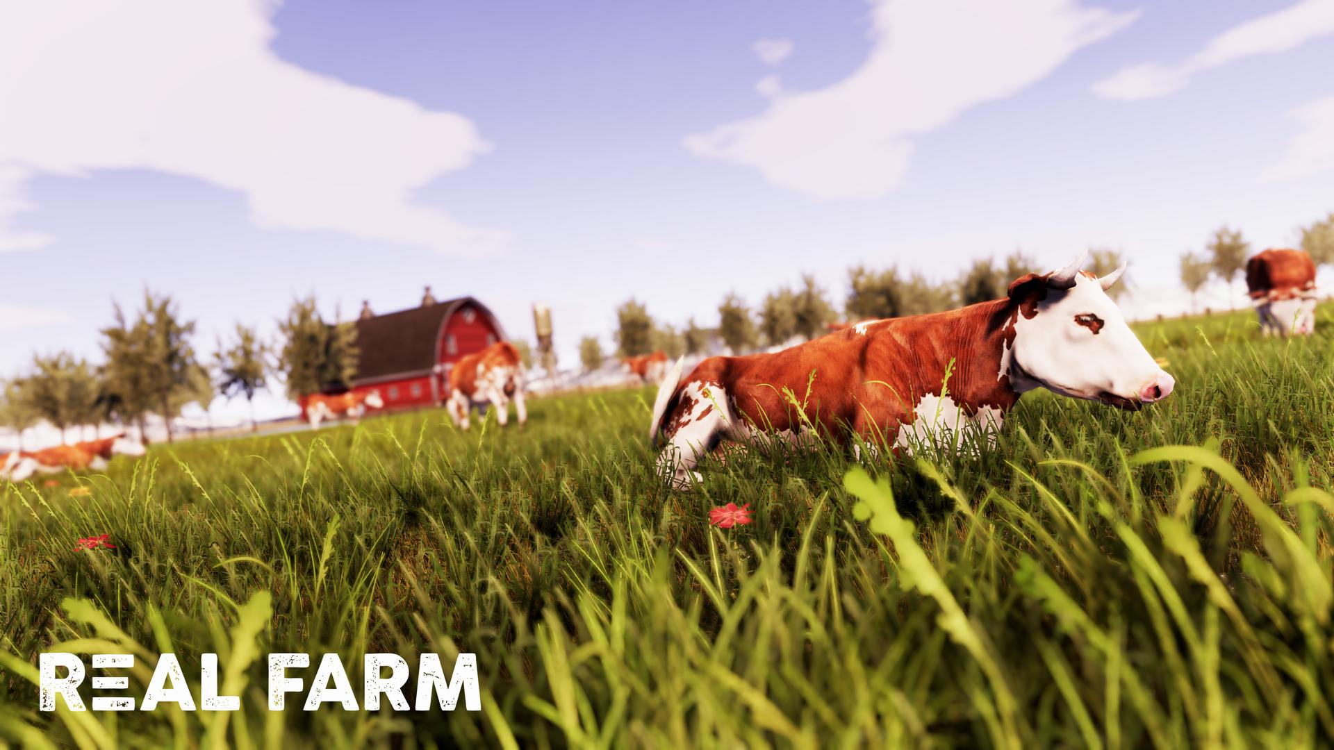 Výzva na venkově v Real Farm 149638