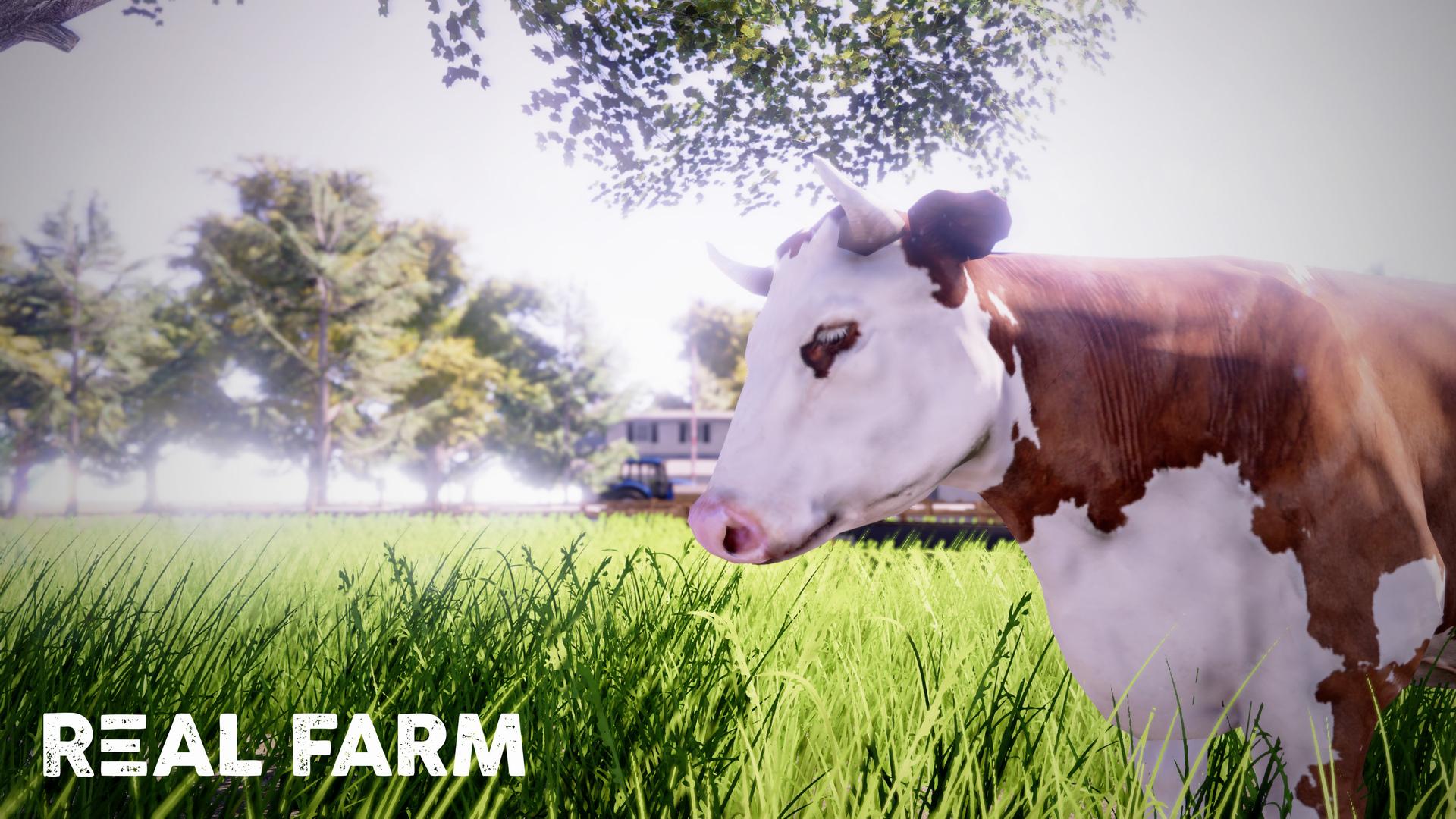 Výzva na venkově v Real Farm 149639