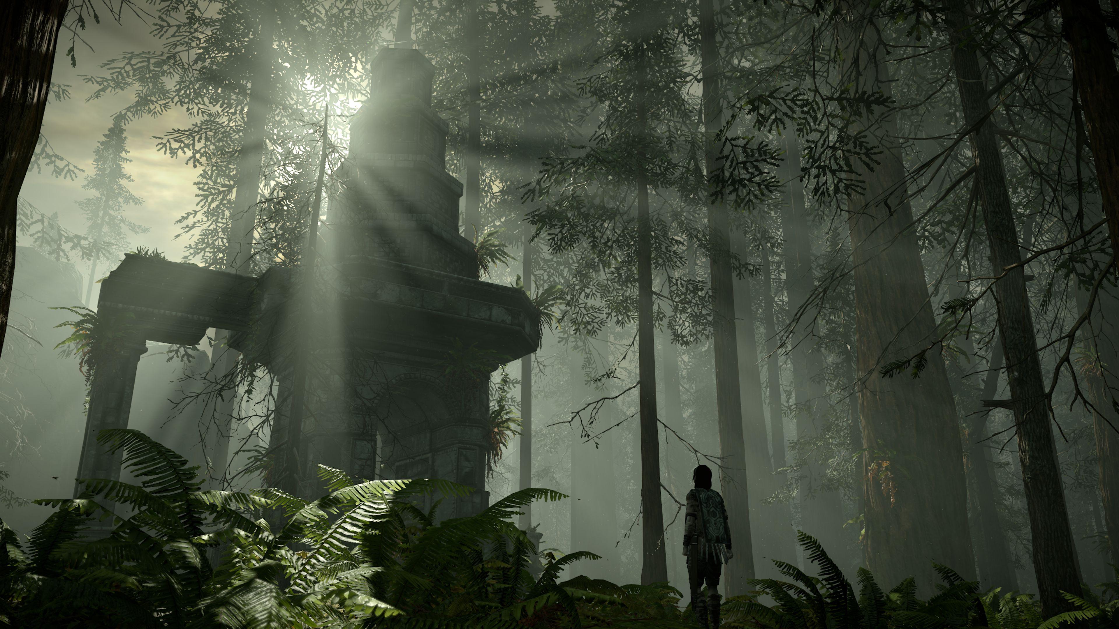 Shadow of the Colossus - dojmy 152053