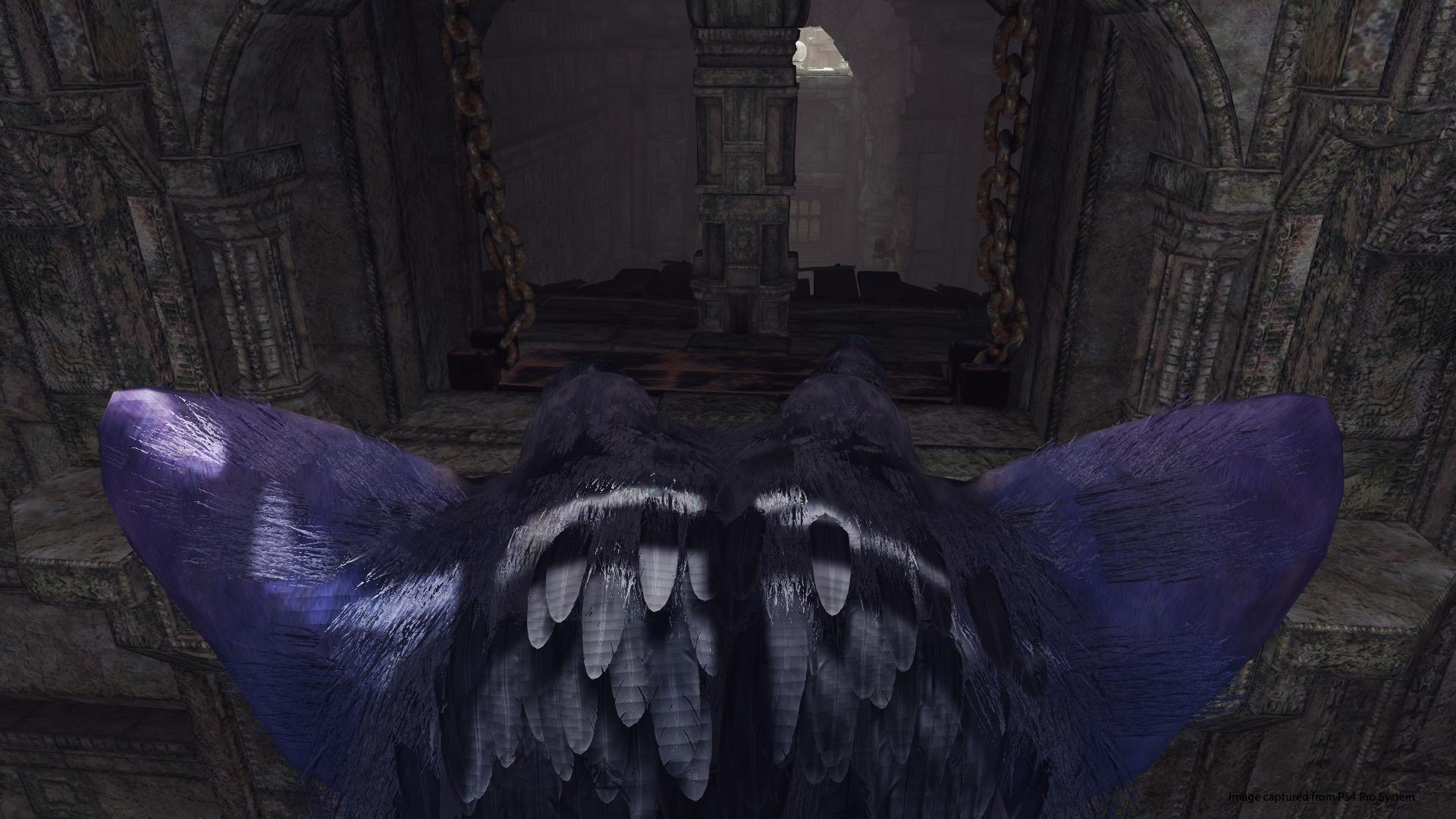 The Last Guardian a kolekce WipEout pro PlayStation VR 153794