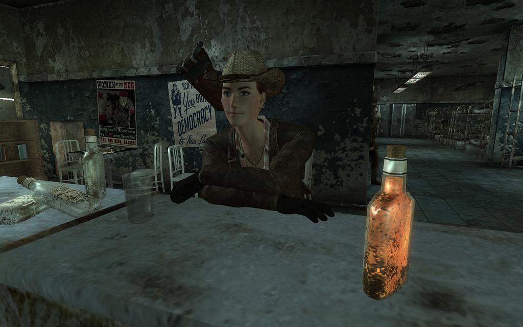 Společníci ve Fallout: New Vegas - seznamte se 16504