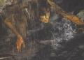 Tomb Raider – znovuzrozený dobrodruh 25775