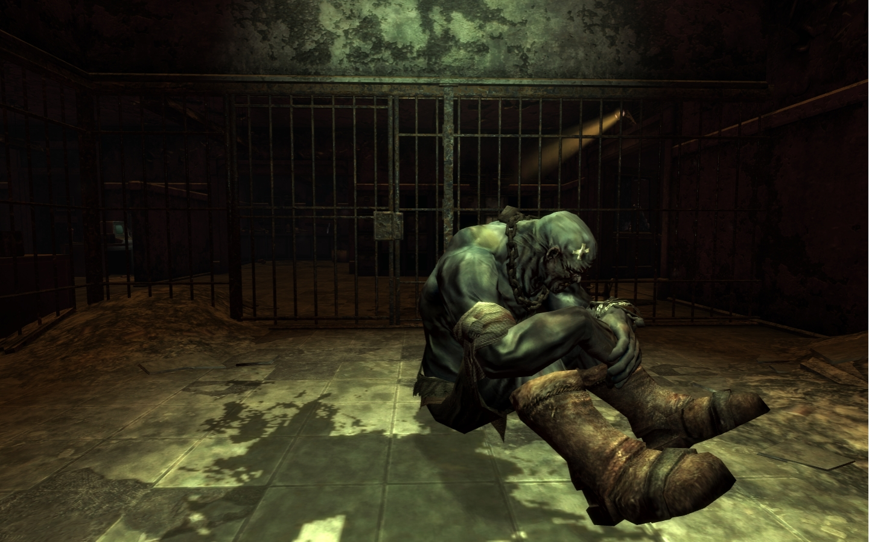 Fallout: New Vegas přetéká DLC 27379