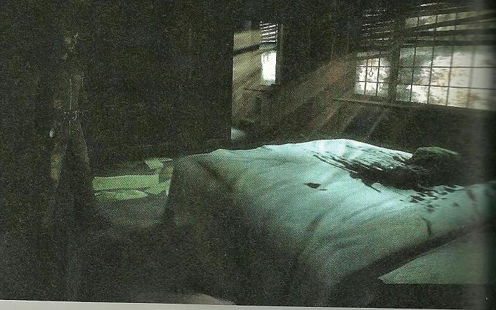Nový Silent Hill s podtitulem a detaily 28902