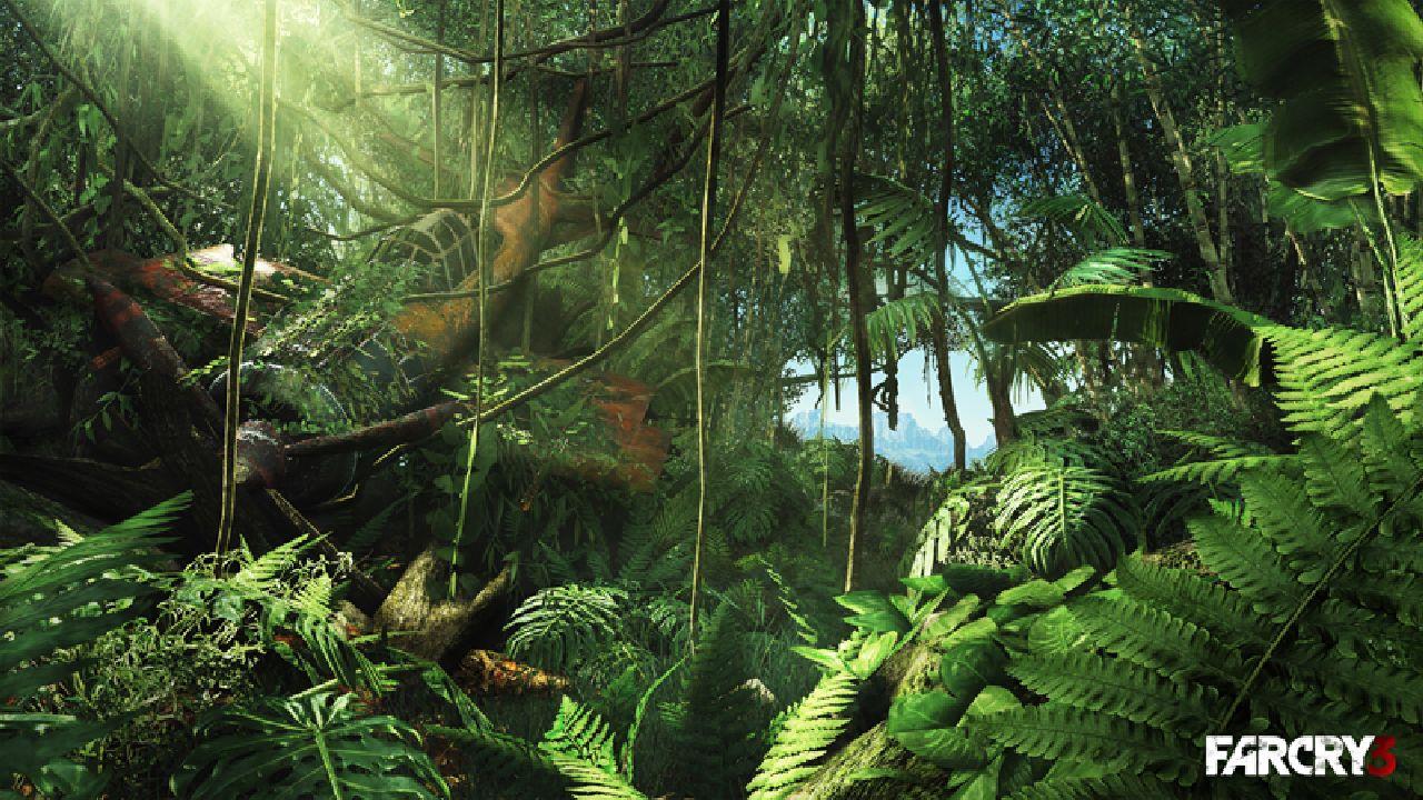 Far Cry 3 – Obecné otázky a odpovědi 43637