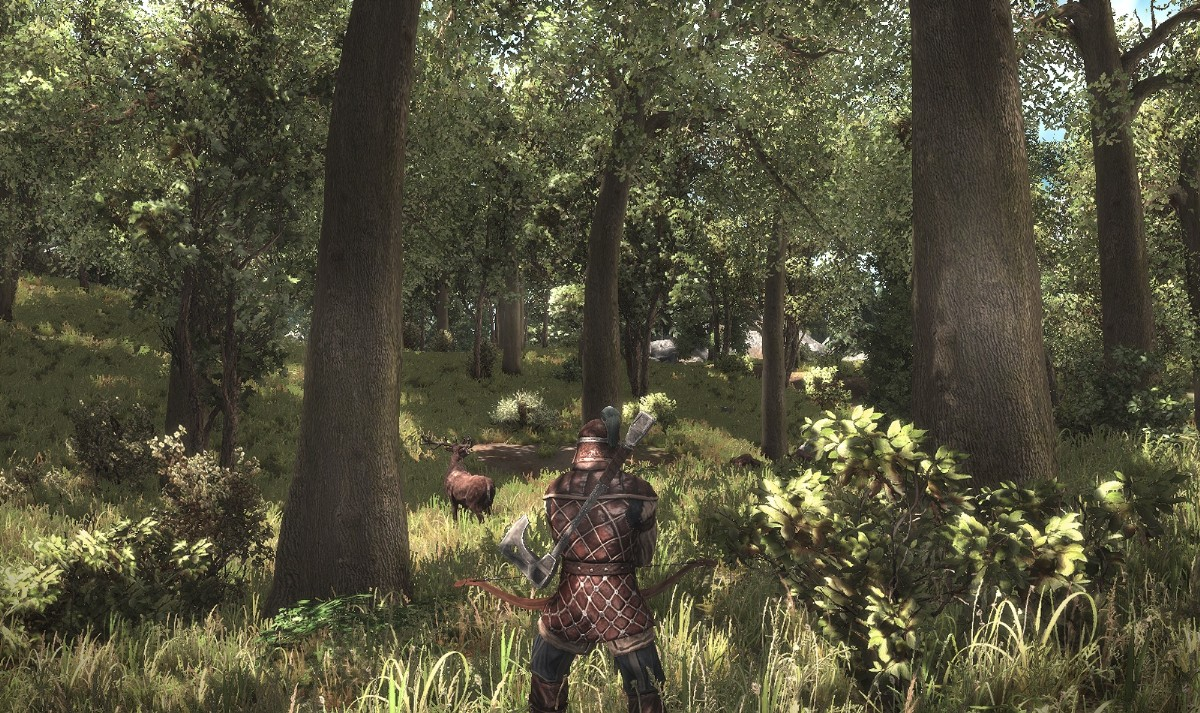 Arcania: Gothic 4 – pomsta bezejmenného pastýře 5016