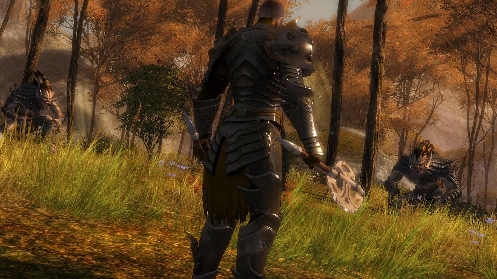 Guild Wars 2 bez healerů a tanků? 5263