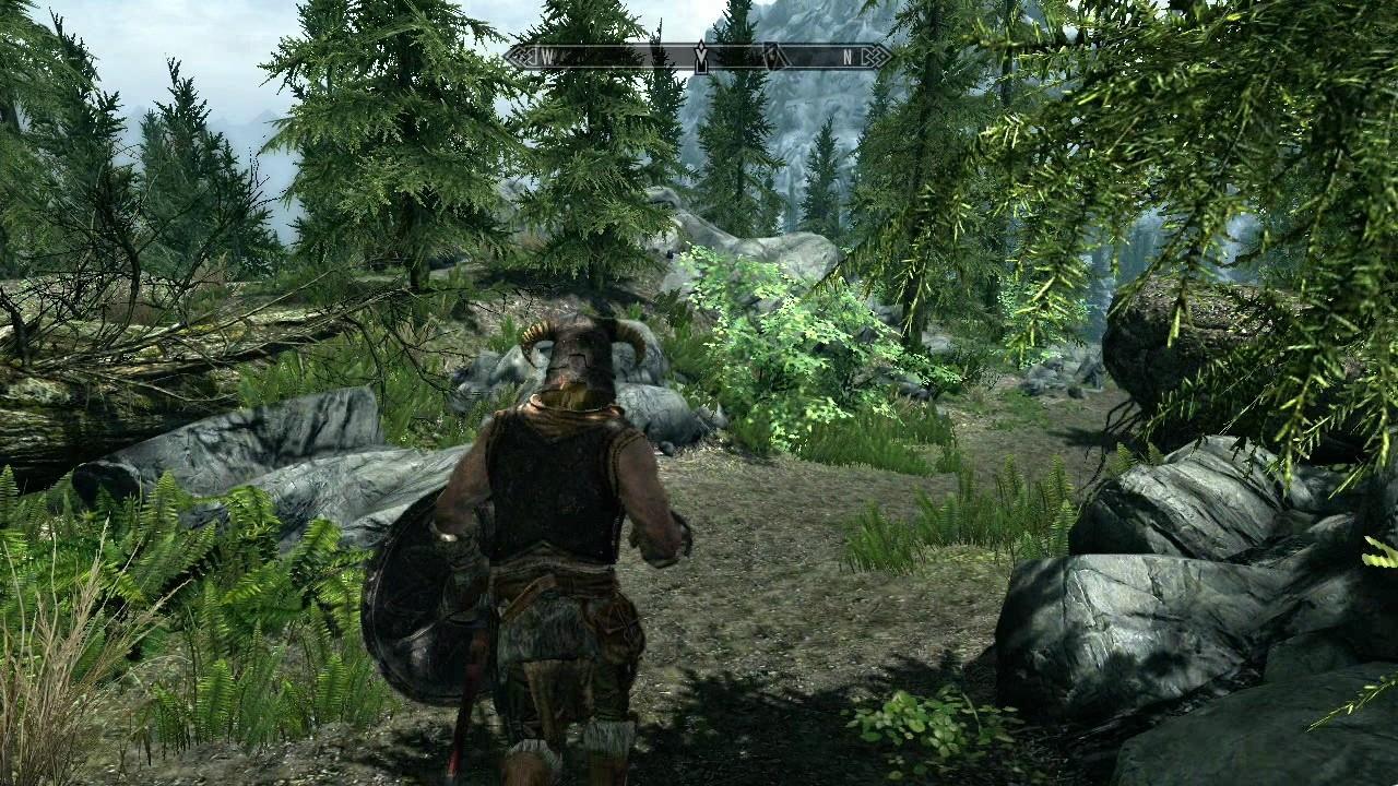 Jak na problémy u PC verze Skyrim? 54526
