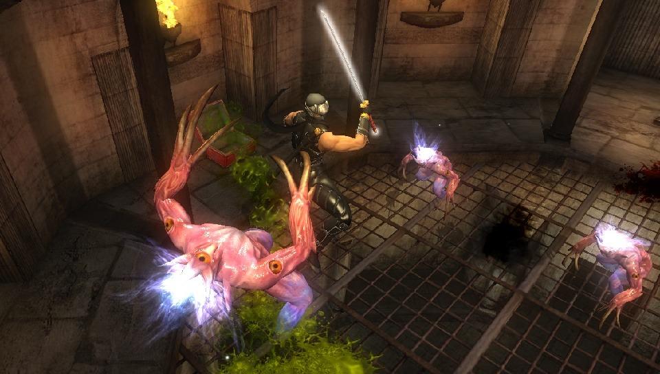 První obrázky z Ninja Gaiden Sigma pro PSV 56370