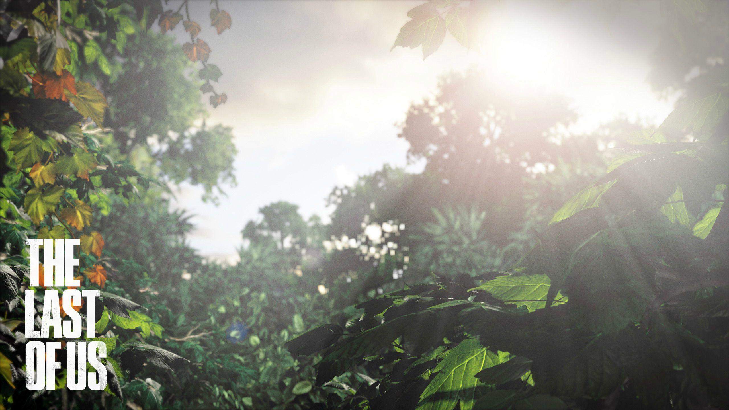 Tvůrci Uncharted chystají akci The Last of Us 56982