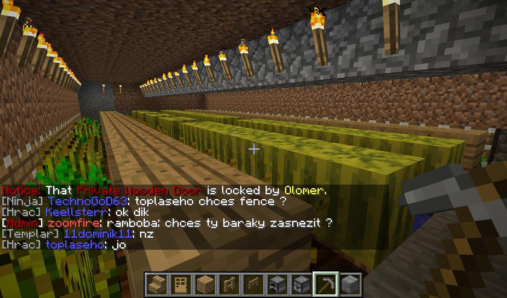 Minecraft – kostičky nás baví 57552