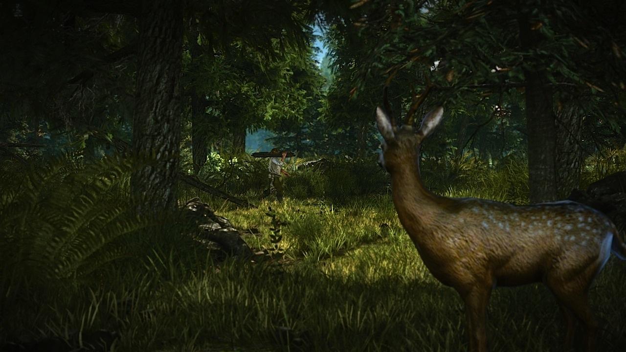 Řada detailů o Xbox i PC verzi Zaklínače 2 59257
