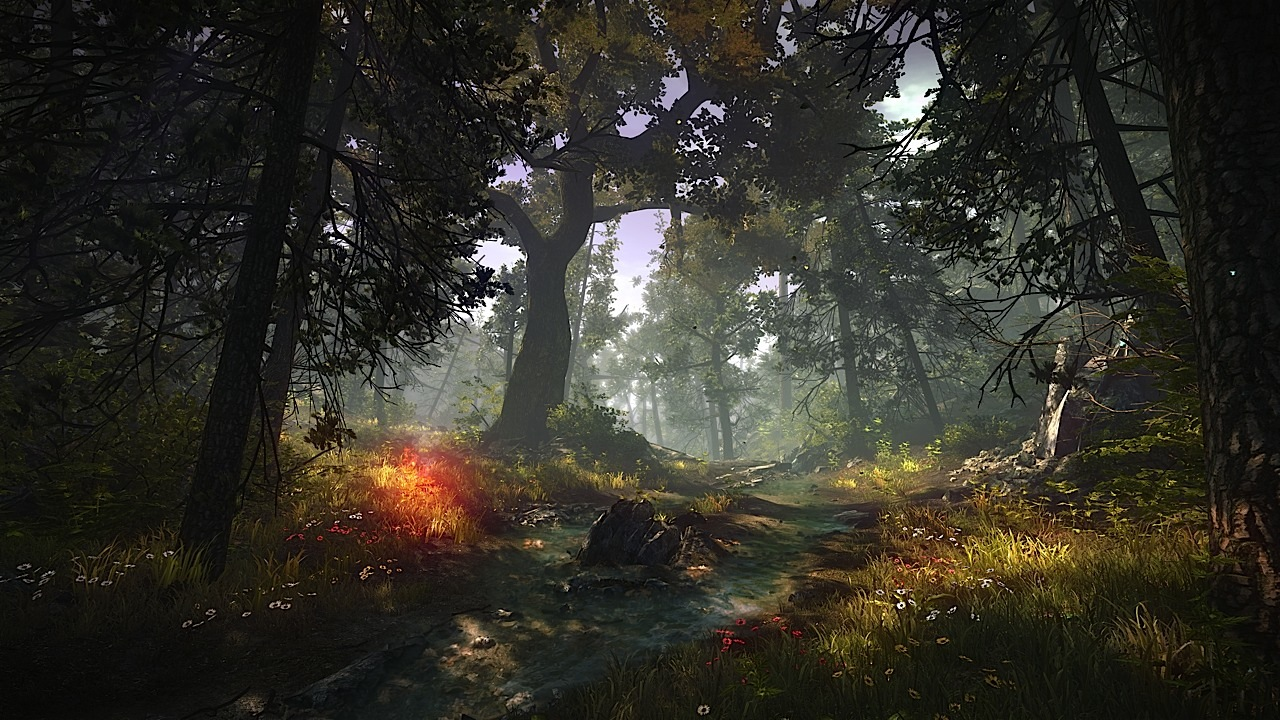 Řada detailů o Xbox i PC verzi Zaklínače 2 59259