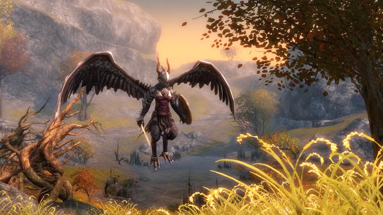 Přihlaste se do bety Guild Wars 2 60575