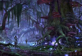 První obrázky z Elder Scrolls Online 64744
