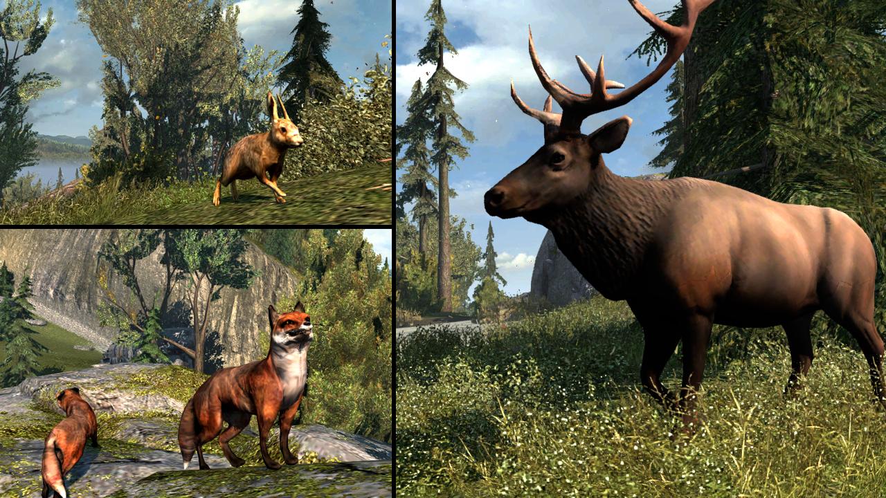 Lovení v Assassin's Creed 3 nebude pro srandu králíkům 70458