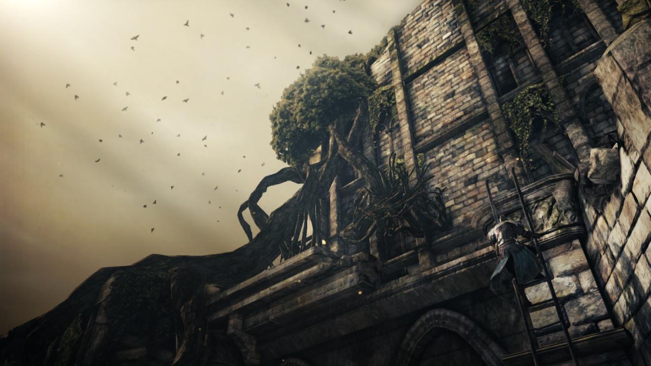 Nové screenshoty z Dark Souls 2 79501