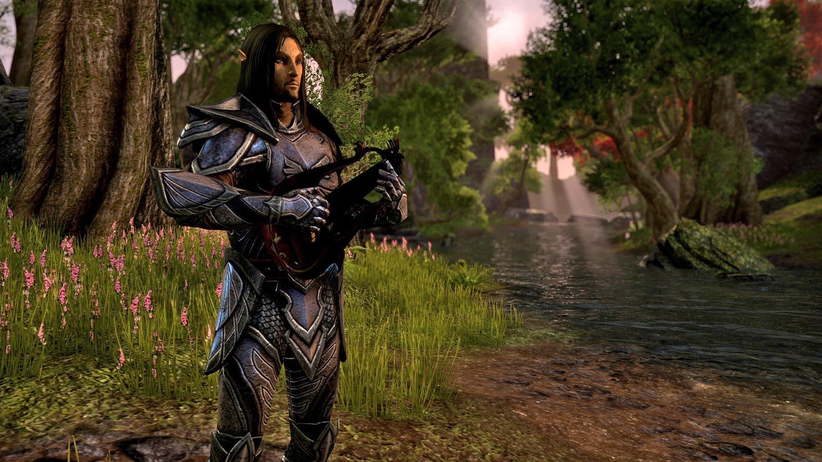 Nové obrázky z Elder Scrolls Online 79597