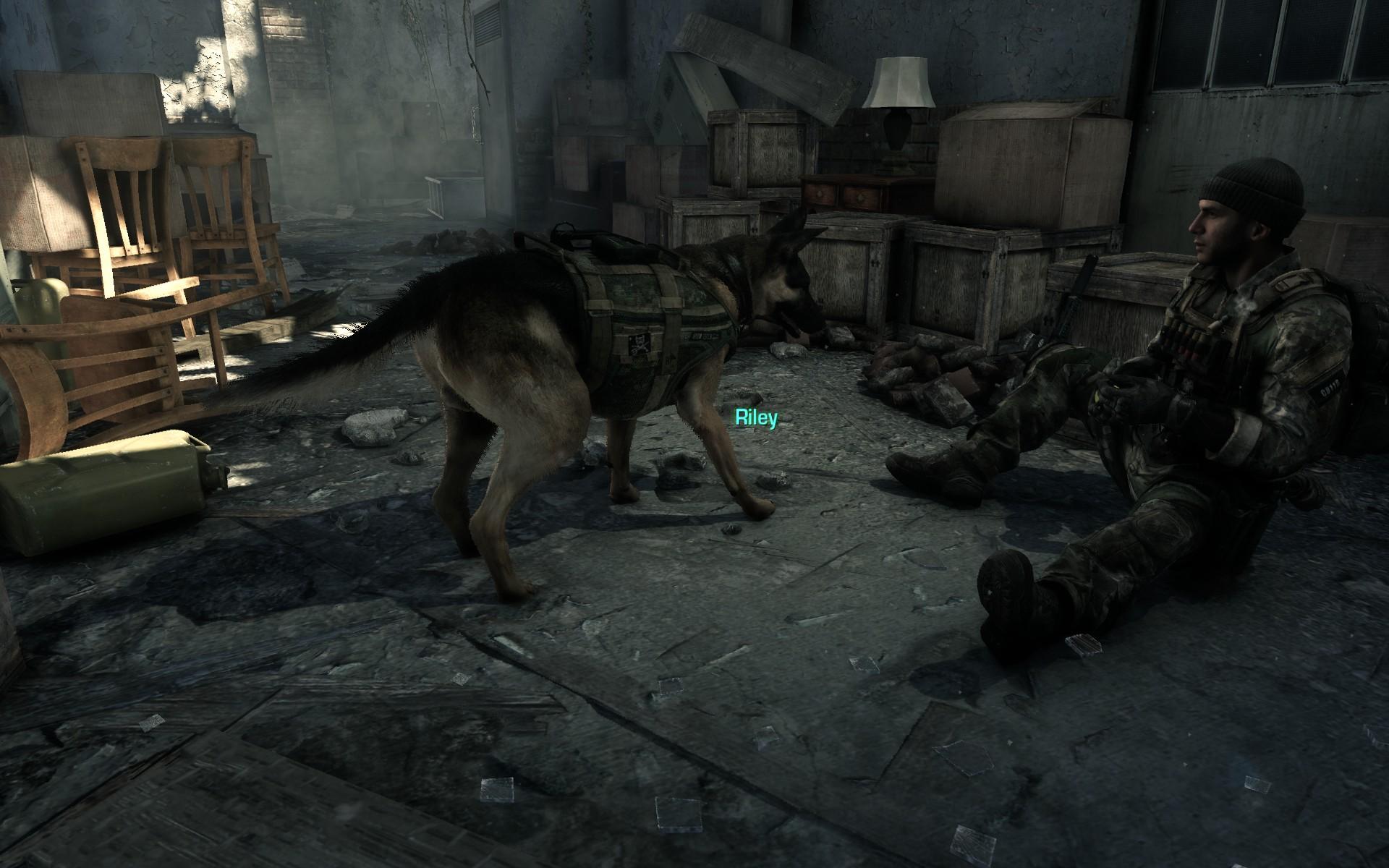 Pes Riley z Call of Duty: Ghosts se dočkal lepší srsti 90428