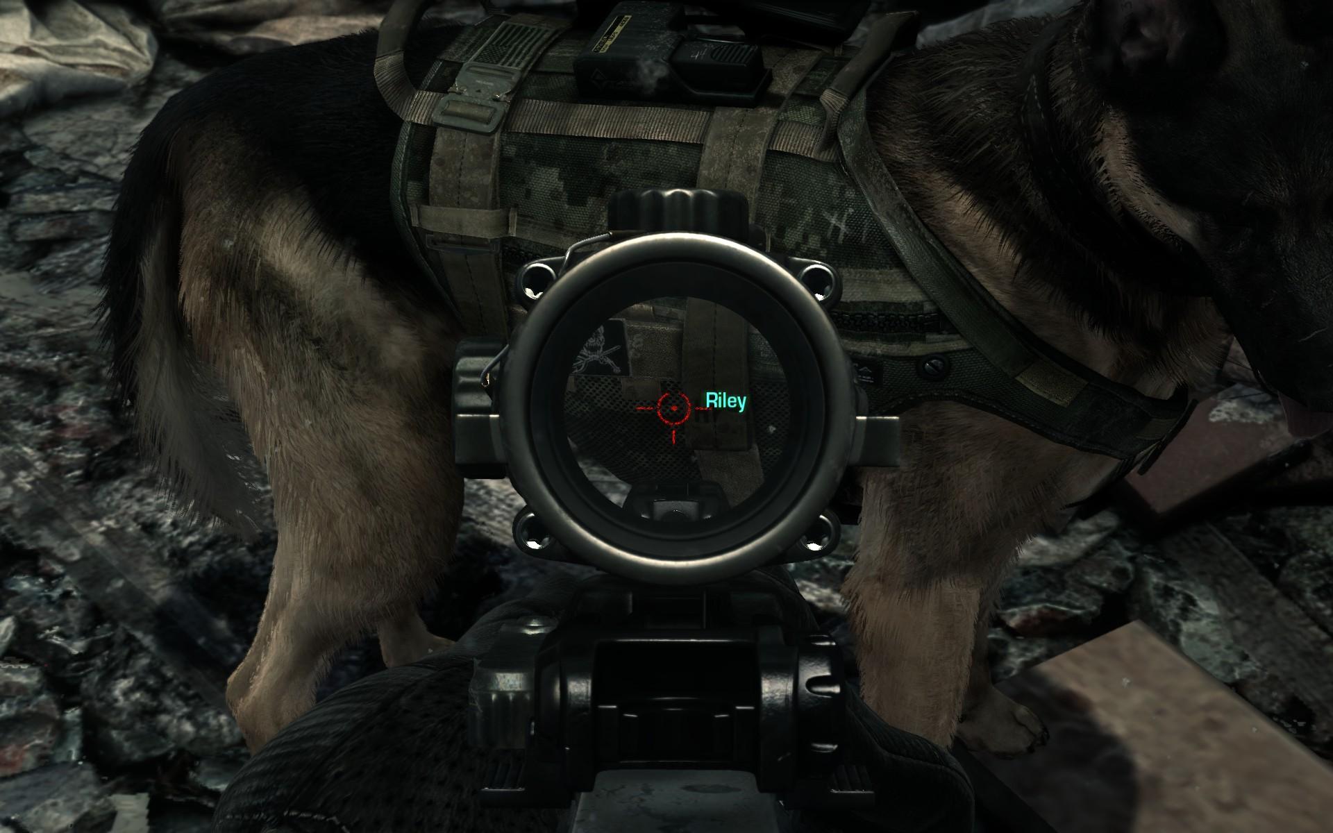Pes Riley z Call of Duty: Ghosts se dočkal lepší srsti 90429