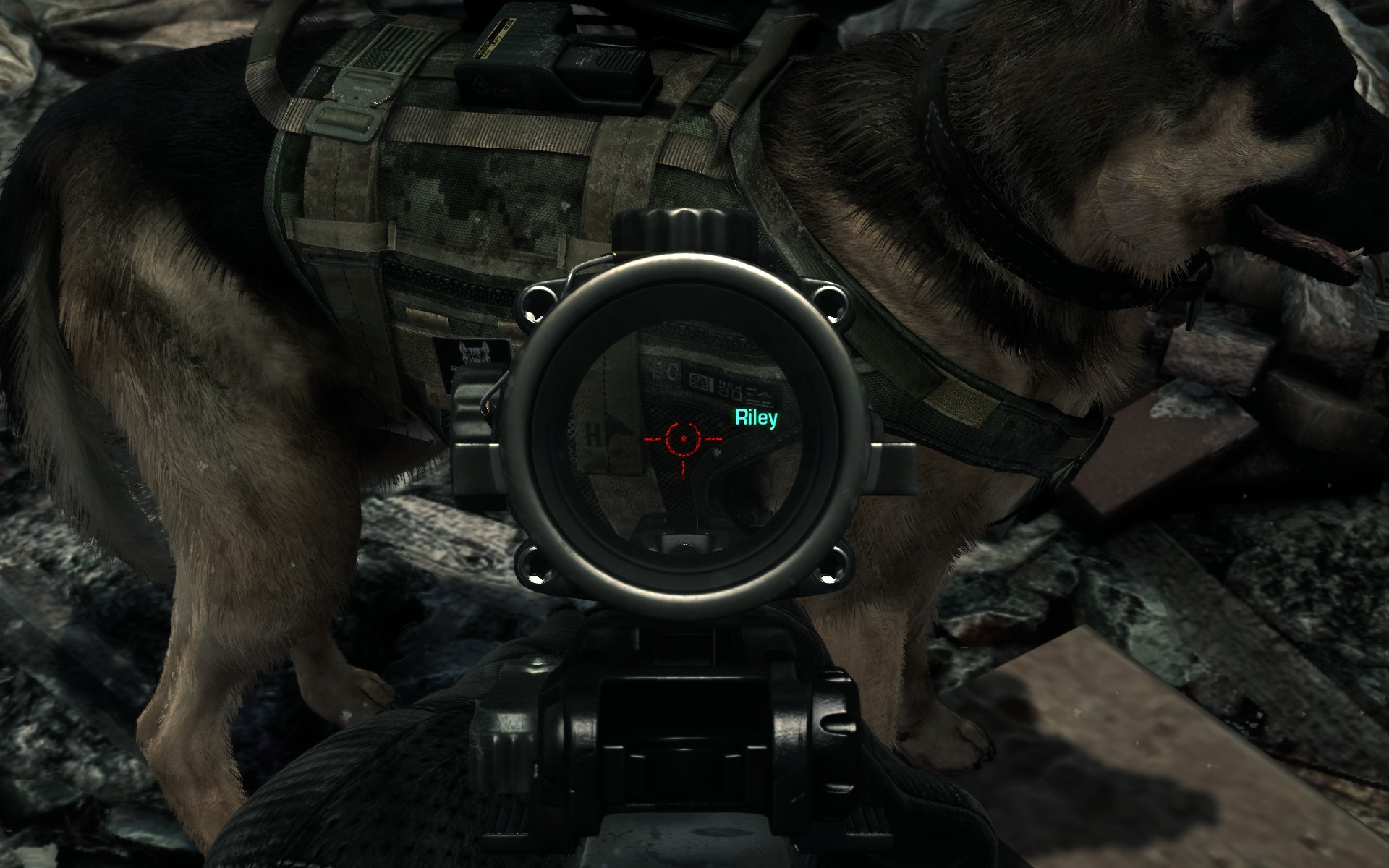 Pes Riley z Call of Duty: Ghosts se dočkal lepší srsti 90430