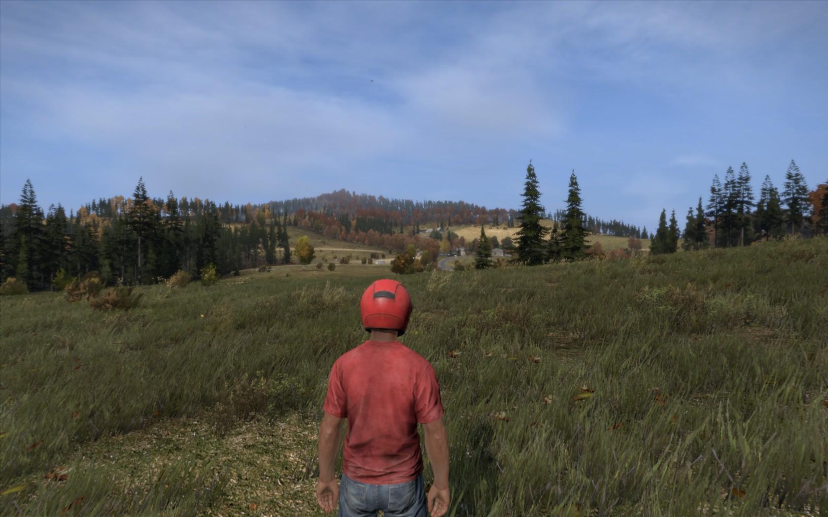 Screenshoty vytípáné z hraní DayZ 91108
