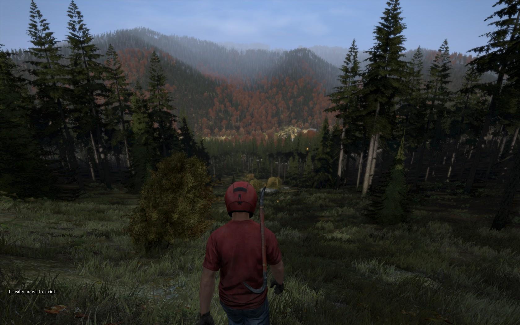 Screenshoty vytípáné z hraní DayZ 91113