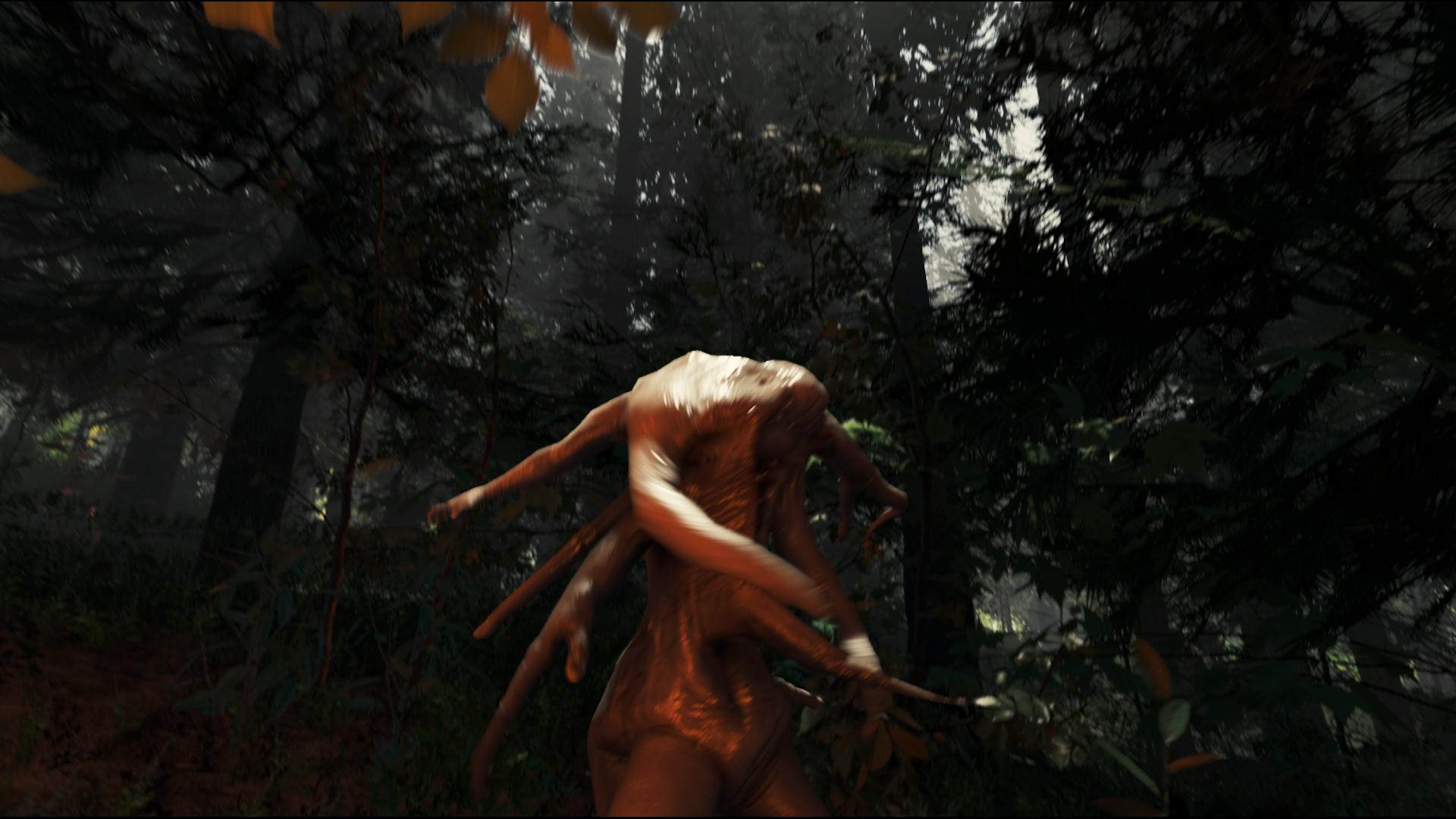 Nové screenshoty The Forest 95179