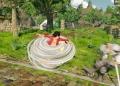 Pohyb a útoky na obrázcích z One Piece: World Seeker 155302