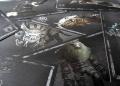 Fotky novinářské edice Shadow of the Colossus a recenze 155420