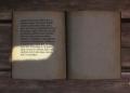 Kingdom Come: Deliverance - recenze 156084