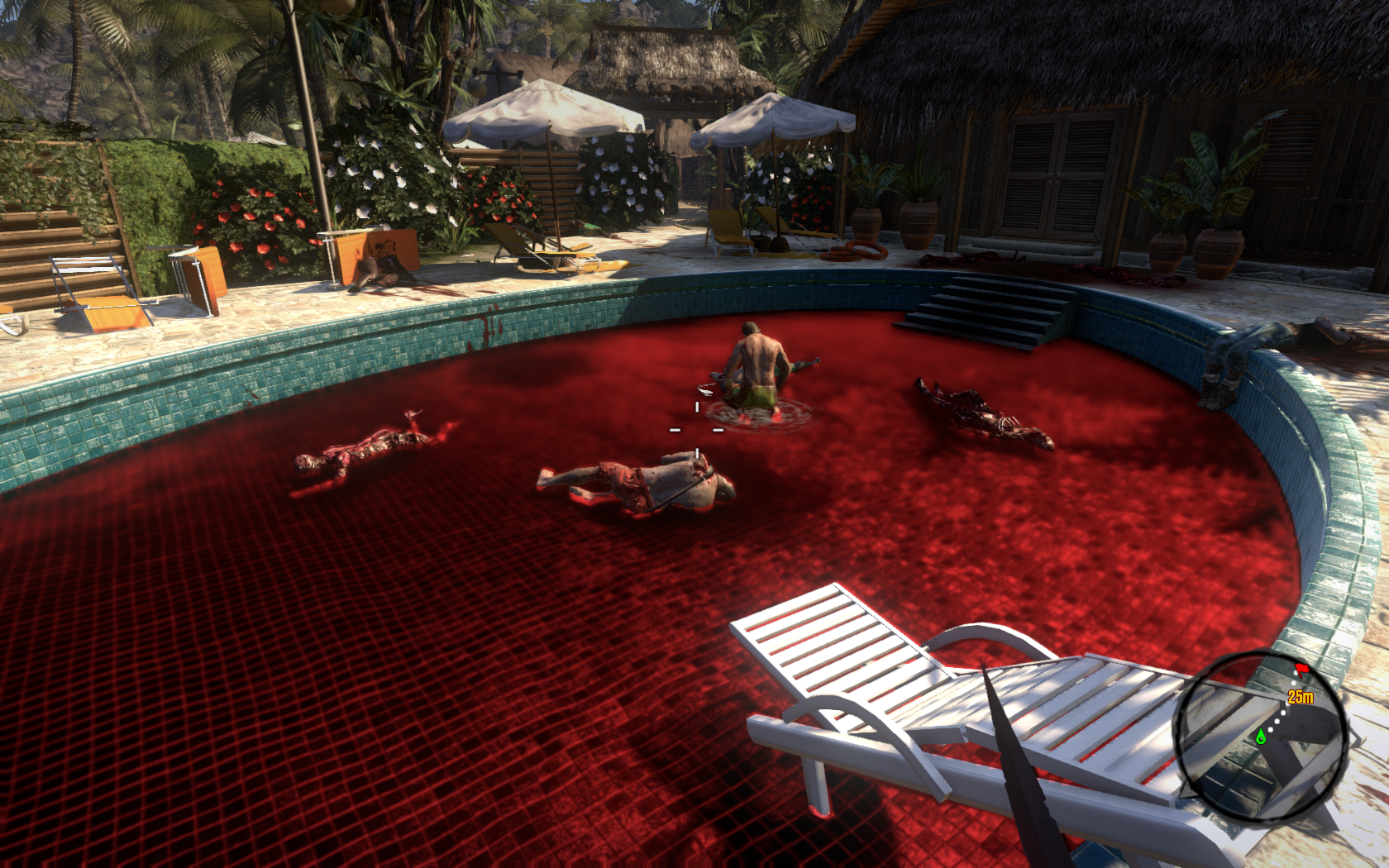 Dead Island - Maybe you should take a med-kit 3947