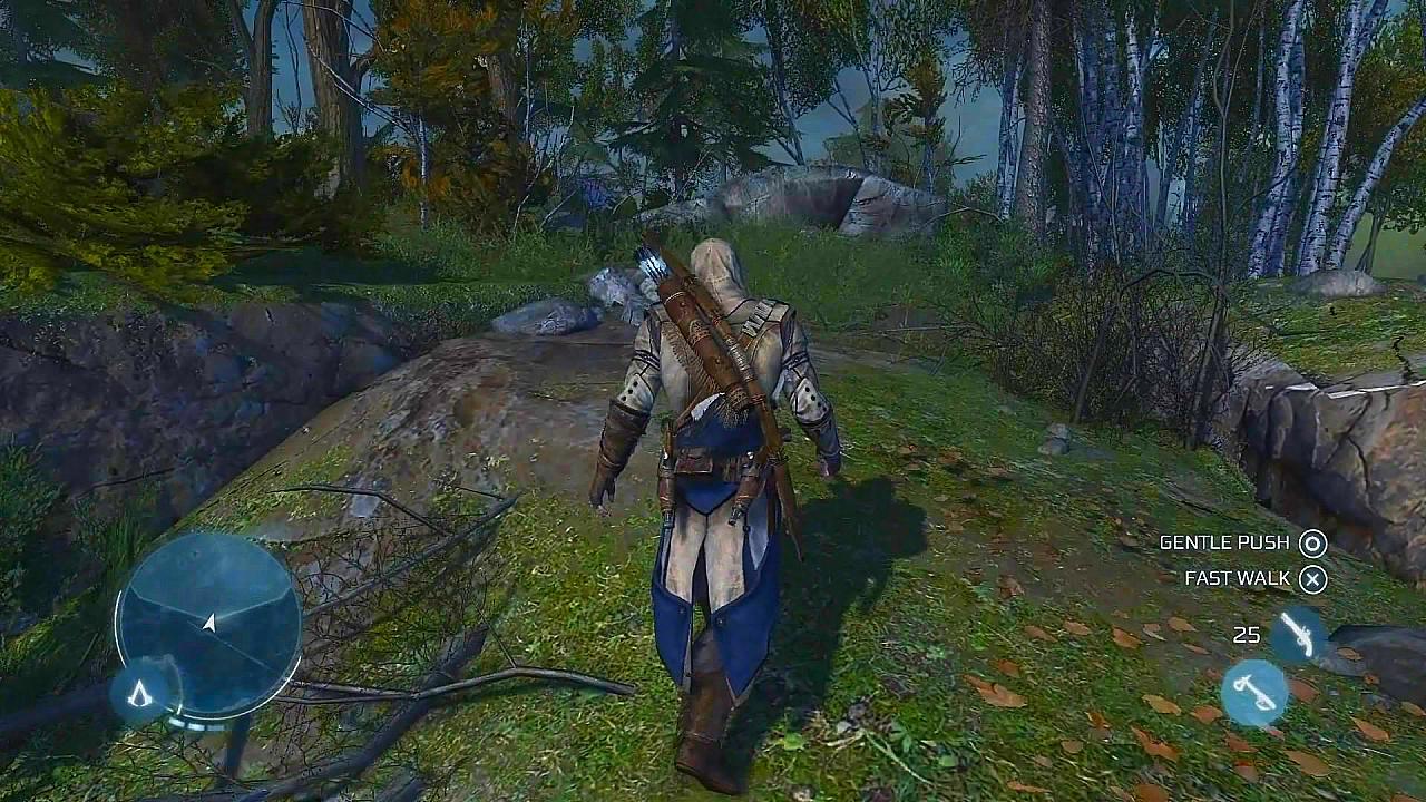 Recenze Assassins Creed 3 6057