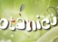 Botanicula, hra která zahřeje u srdce 6567
