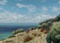 Z australské knížky Storm Boy pro děti bude hra Storm Boy The Game 06
